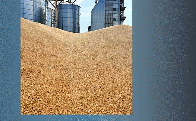 Improving Value in Soybean Processing
